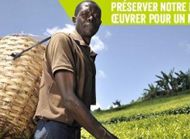 Les petits producteurs veulent être présents à la COP 21
