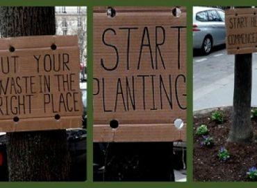 Start planting !