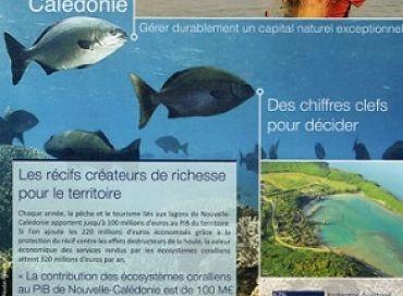 Les récifs coralliens face au changement climatique