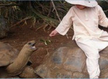Sauvez des tortues en achetant des vêtements