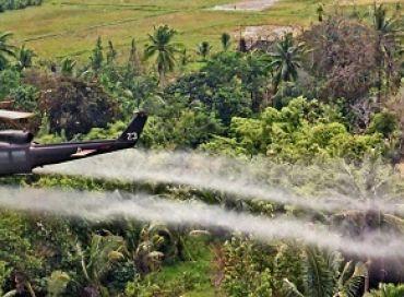 Tribunal Monsanto
