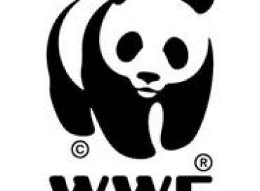 Les produits-partage éco-responsables du WWF